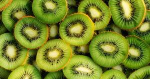 Fruit Encounter ; KIWI