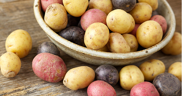 A Guide To Every Type Of Potato You Need To Know