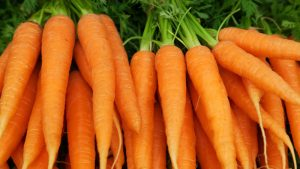 Nutrition Facts and Health Benefits of Carrots