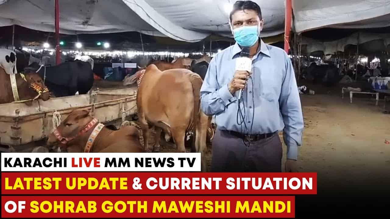 Latest Update And Current Situation Of Sohrab Goth Maweshi Mandi