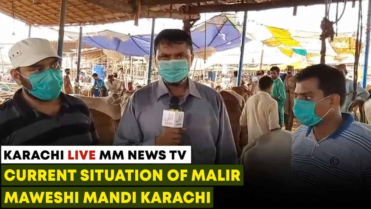 Current Situation Of Malir Maweshi Mandi
