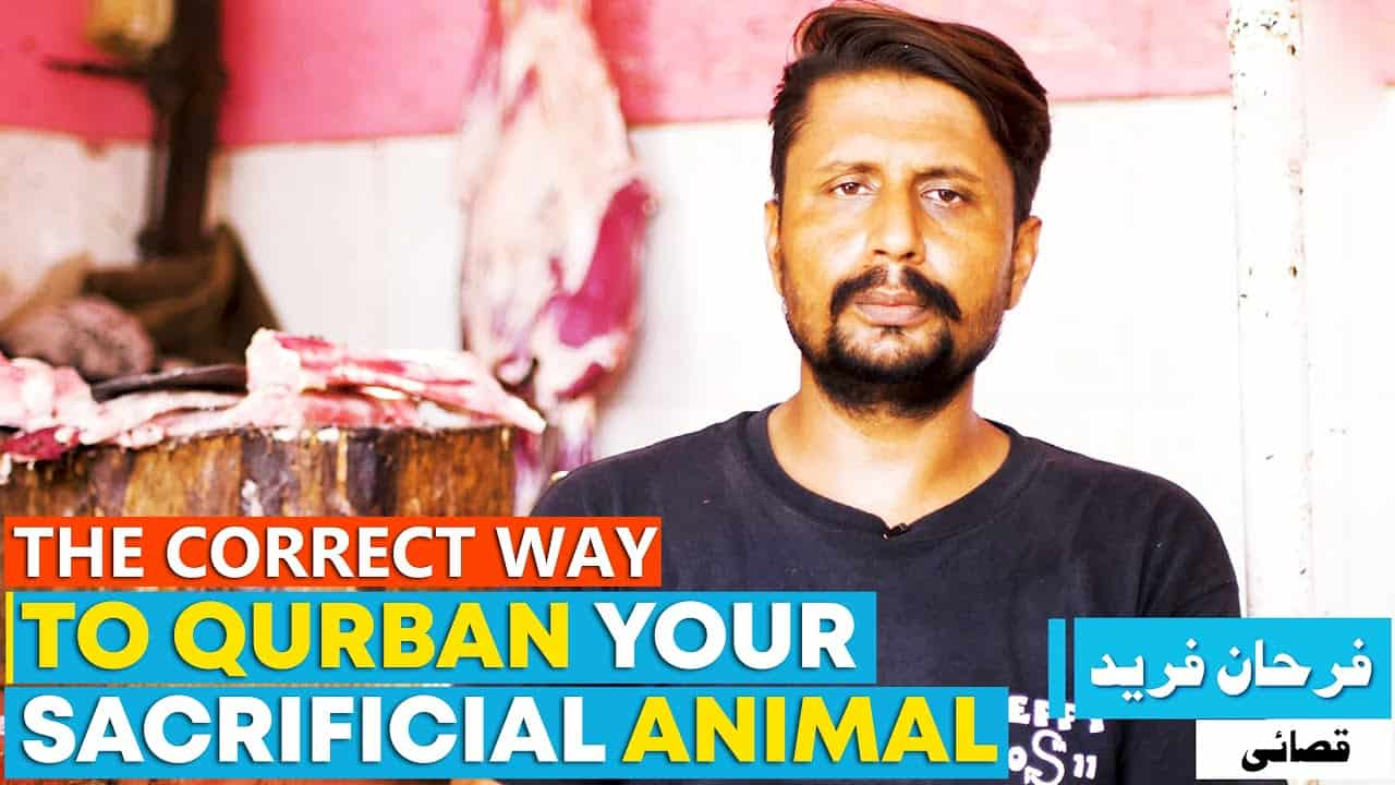 The Correct Way To Qurban Your Sacrificial Animal